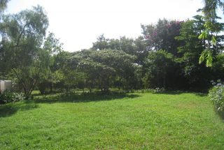 Lawn of the Five Bedroom House for Sale in Mateves, Arusha by Tanganyika Estate Agents