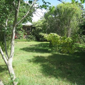 Garden of the Five Bedroom House for Sale in Mateves, Arusha by Tanganyika Estate Agents