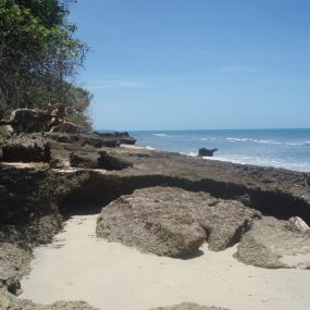 The Beach of the Beachfront Property for Sale in Kikokwe by Tanganyika Estate Agents