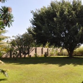 Lawn of the 5 Bedroom Home for Sale in Njiro PPF, Arusha by Tanganyika Estate Agents
