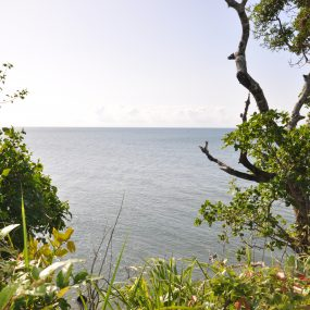 The Ocean View from the Landscaped Ocean Plot for Sale in Amboni Beach by Tanganyika Estate Agents
