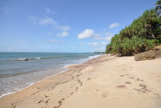 The Beach of the Beach Property for Sale in Amboni by Tanganyika Estate Agents