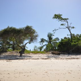 The Beach of the Beachfront Plot for Sale in Stahabu by Tanganyika Estate Agents