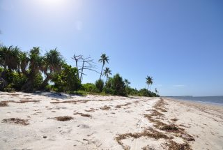 The Beach of the Beach Plot for Sale in Stahabu, South of Ushongo by Tanganyika Estate Agents