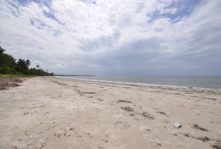 Beachfront of the 6 Acre Prime Beachfront Plot for Sale in Ushongo by Tanganyika Estate Agents