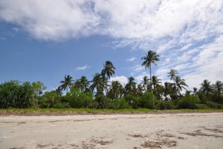 The 6 Acre Prime Beachfront Plot for Sale in Ushongo by Tanganyika Estate Agents