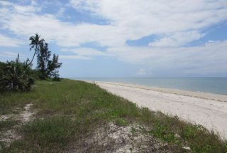 The Beach of the Beachfront Property for Sale in Mkwaja by Tanganyika Estate Agents