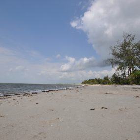 The Beach of the 4 Bedroom Furnished House for Sale in Mkwaja by Tanganyika Estate Agents