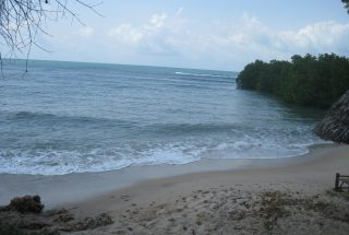 Beach View of the Eco Friendly Lodge for Sale, Dar es Salaam by Tanganyika Estate Agents