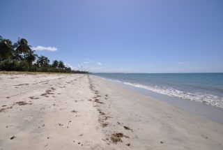The Beach of the 32 Acre Beachfront Property for Sale in Sange by Tanganyika Estate Agents