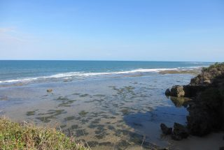 The Ocean View from the Beach Plot for Sale in Kikokwe by Tanganyika Estate Agents