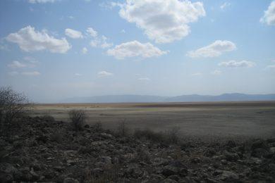 Lake Manyara – Character