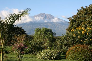 Arusha – Unique property – 20.8 acres