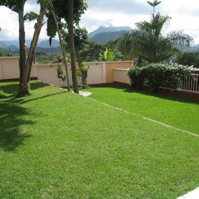 The Lawn on the Three Bedroom Home Rental on Kimandolu Hill, Arusha by Tanganyika Estate Agents