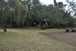 Another Garden of the Three Bedroom Rental Home in Themi Hill, Arusha by Tanganyika Estate Agents