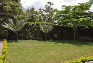 Back Garden of the Three Bedroom Furnished House in Usa River Town by Tanganyika Estate Agents