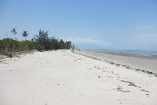 The Beach of the Beachfront Land for Sale in Mikocheni by Tanganyika Estate Agents