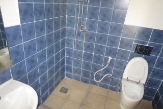 Bathroom of the One Bedroom Furnished Apartment in Dar es Salaam by Tanganyika Estate Agents