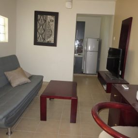 Living Room of the One Bedroom Furnished Apartment in Dar es Salaam by Tanganyika Estate Agents