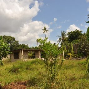 Part of the Property of the Land for Sale on Pugu Road, Dar es Salaam, by Tanganyika Estate Agents