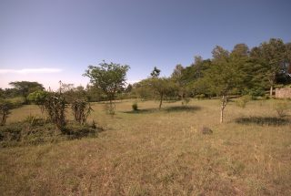 The Land of the 3 Bedroom Furnished House for Sale in Usa River, Arusha by Tanganyika Estate Agents