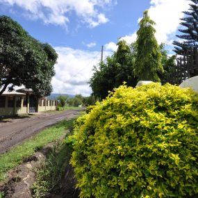 Outside Road of the Three Bedroom Furnished House in Usa River Town by Tanganyika Estate Agents