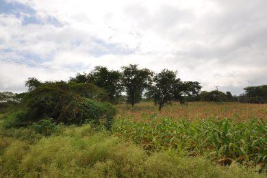 Olasiti – 2.85 acres