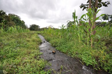 Plot for Sale in Usa River, Arusha
