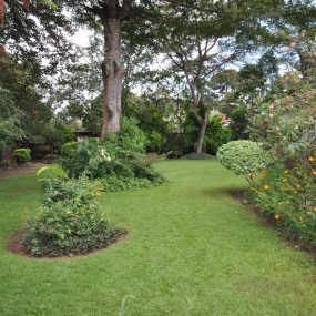 Garden of the Four Bedroom Furnished House in Olorien by Tanganyika Estate Agents