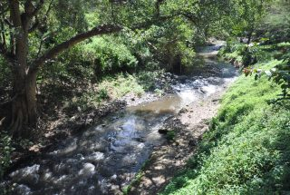 The River Along the of the 2 Bedroom Cottage for Sale Usa River, Arusha by Tanganyika Estate Agents