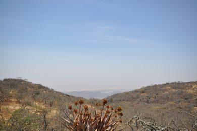 Land for Sale Overlooking Lake Eyasi