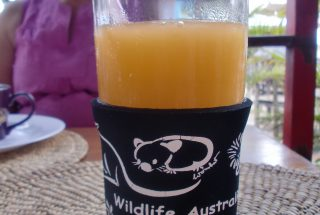 Orange Juice at the Profitable Restaurant for Sale in Arusha by Tanganyika Estate Agents