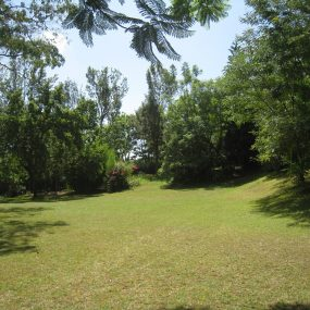 Garden of the House for Rent by Tanganyika Estate Agents