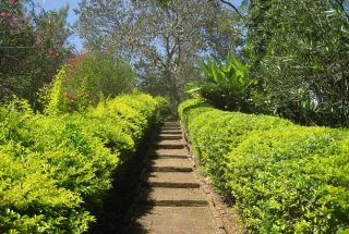Outdoor Staircase for House for Rent by Tanganyika Estate Agents