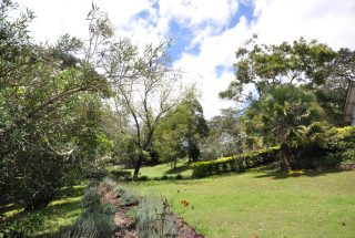 The Garden of the House for Rent by Tanganyika Estate Agents