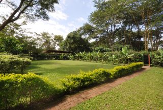 Part of the Garden of the 2 Bedroom Cottage for Sale in Sakina, Arusha by Tanganyika Estate Agents