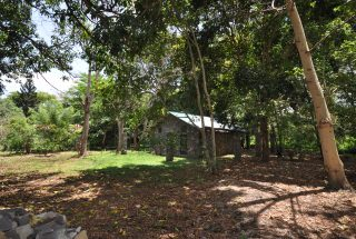 The One Bedroom Furnished Cottage in Usa River by Tanganyika Estate Agents