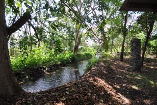 The stream that passes through the land of the One Bedroom Furnished Cottage in Usa River by Tanganyika Estate Agents