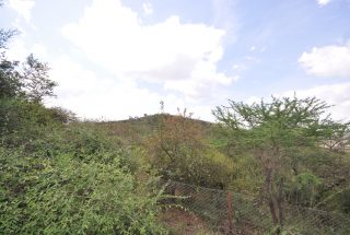 View from the 7 Bedroom Home for Sale in Mateves, Arusha by Tanganyika Estate Agents