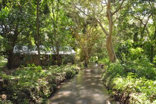 The Stream passing through the of the 5 Bedroom Cottage for Sale in Usa River, Arusha by Tanganyika Estate Agents