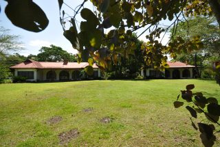 The Lawn of the of the 5 Bedroom Home for Rent in Usa River by Tanganyika Estate Agents