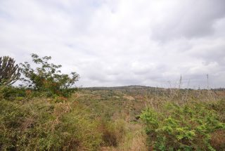 Land of the 2 Bedroom Home for Sale in Olasititi, Arusha by Tanganyika Estate Agents