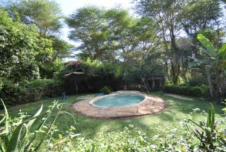 Swimming Pool of the 6 Bedroom House for Sale in Olasiti, Arusha by Tanganyika Estate Agents