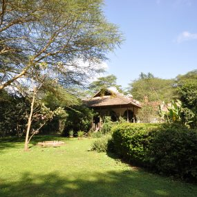 Back of the 6 Bedroom House for Sale in Olasiti, Arusha by Tanganyika Estate Agents