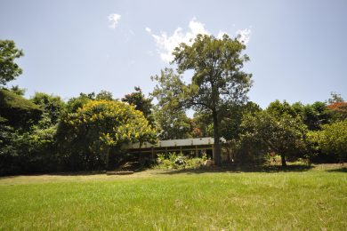 Lodge for Sale in Usa River, Arusha