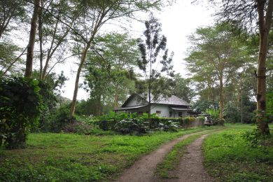 Olasiti – Cottage – All-inclusive!