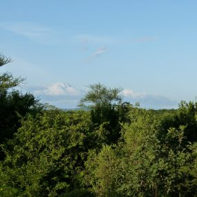 Surrounding View from the 5 Bedroom Property for Sale in Usa River by Tanganyika Estate Agents