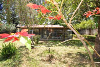 The Veranda & Lawn of the 3 Bedroom Property for Rent Corridor, Arusha by Tanganyika Estate Agents