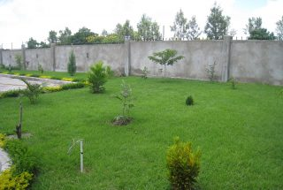 The Lawn of the Five Bedroom House for Rent in Maji ya Chai by Tanganyika Estate Agents