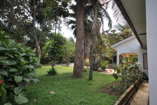 Garden of the Three Bedroom Home for Rent by Tanganyika Estate Agents
